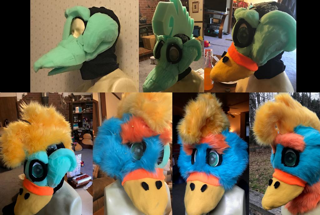 Tropical Bird Progress Collage