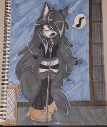 Luna the wolf