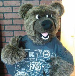 It Bear-ly Fits!
