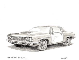Leila Martin's car