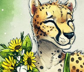 Sunflower Cheetah
