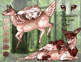 a doe a deer