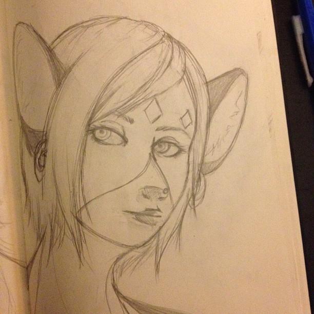 clove sketch