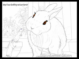 Nelwin and Nelly, A new Home (Outlines)