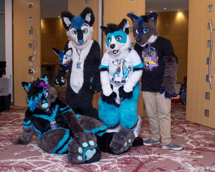 NeonFur 2018: Small Group Photo 1