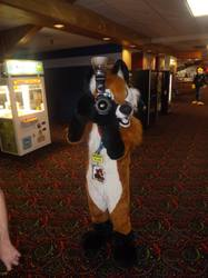 Furry Meet Pictures 14 (Part 63)