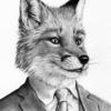 avatar of Steve Foxx