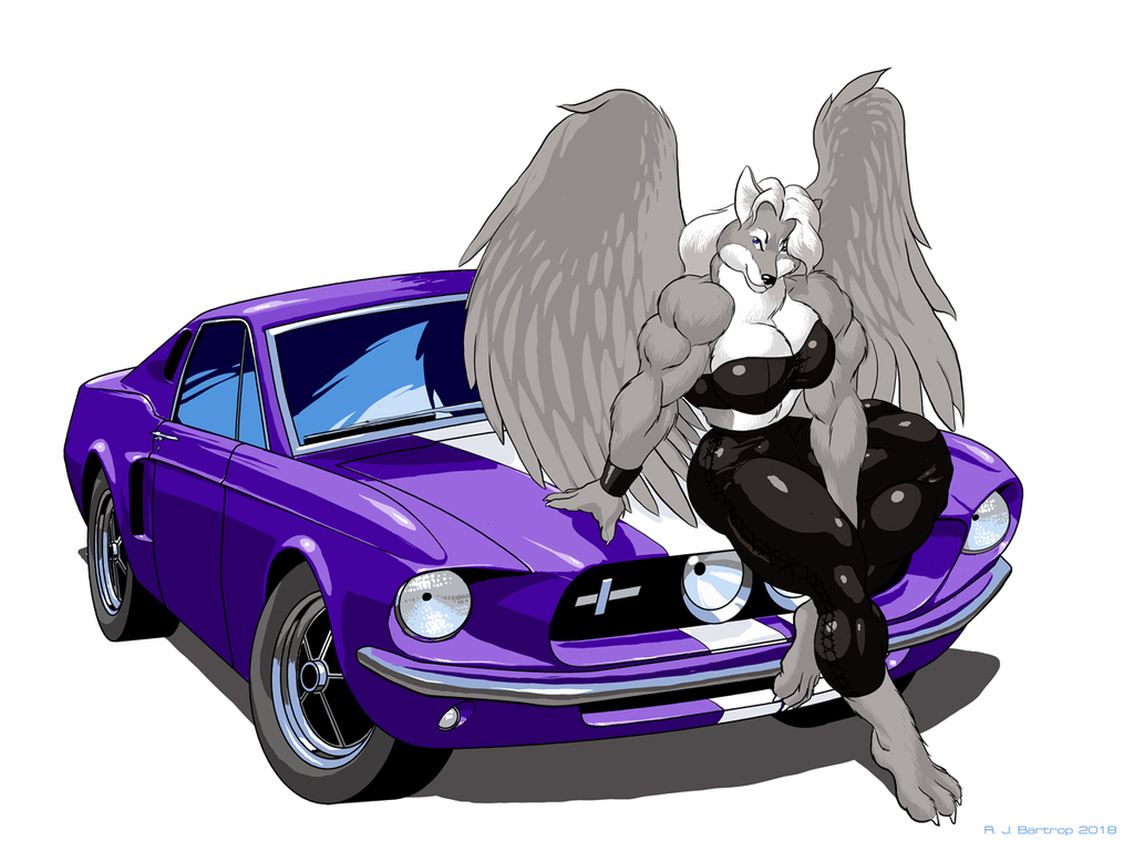 [Commission] Lorin: GT500