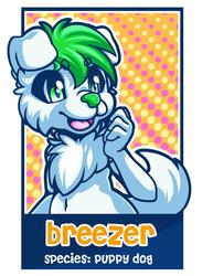 Badge Breezer ♥