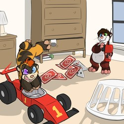 RC Driving, by SpiderDaSquirrel