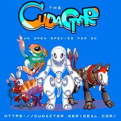 Cudacter Open species