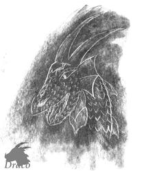 Dragon Head (Charcoal drawing )