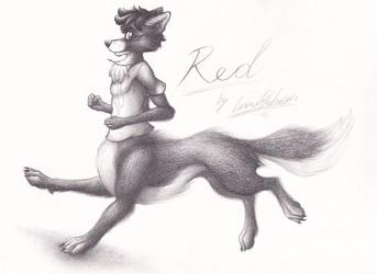Red's WolfTaur Run