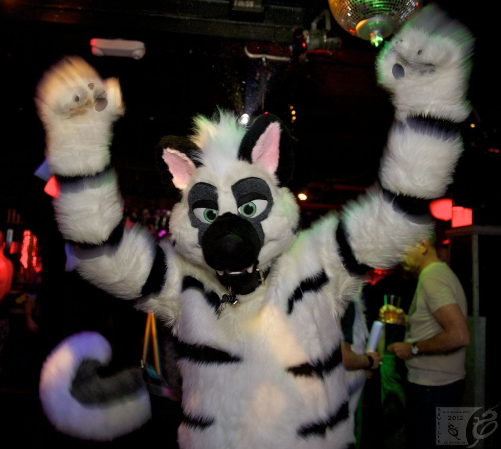 Most recent image: Duke @ Frolic March 2012