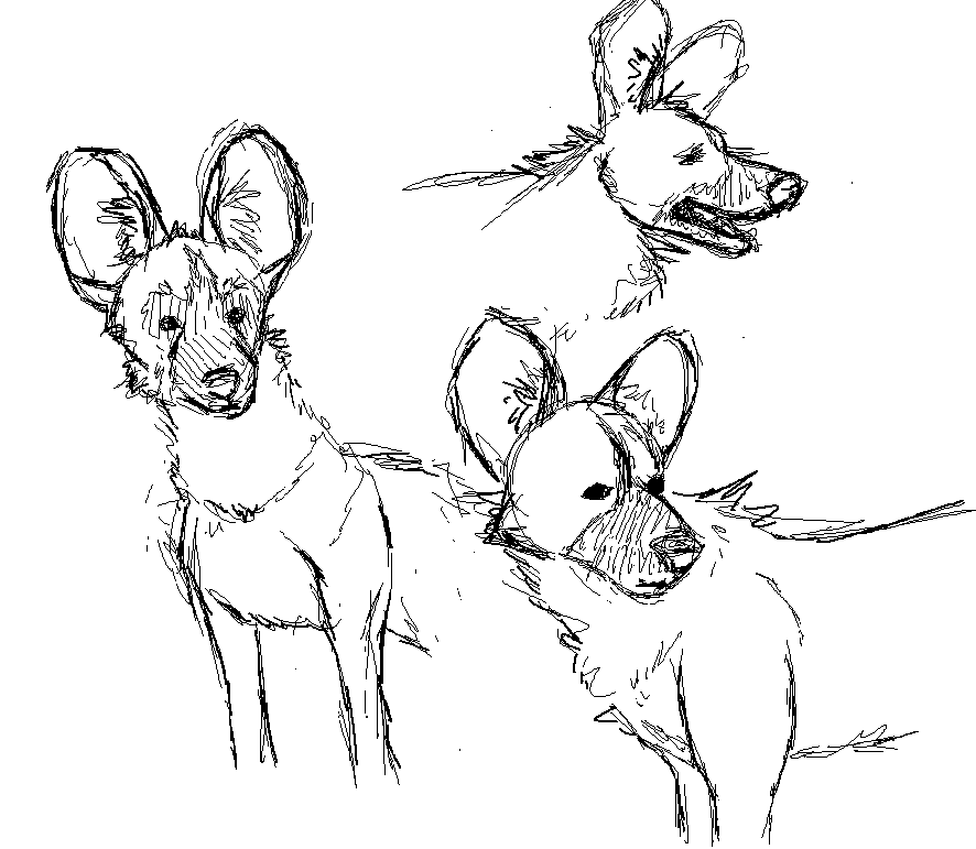 Most recent image: Sketches from Life: AWD