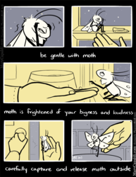 Be Kind to Moth [2]