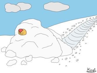 Buried under Snow