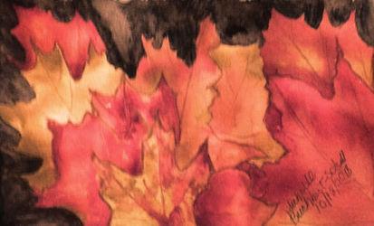 Autumn Maples