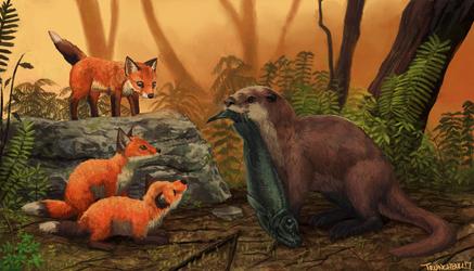 Mother Otter feeds Fox Cubs