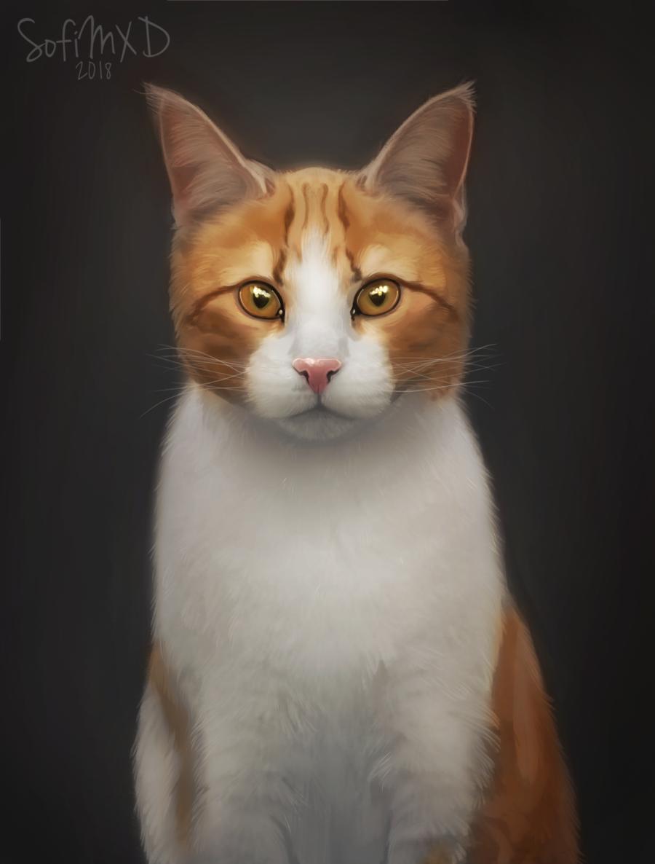 [portrait#12]