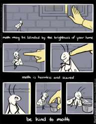 Be Kind to Moth [3]