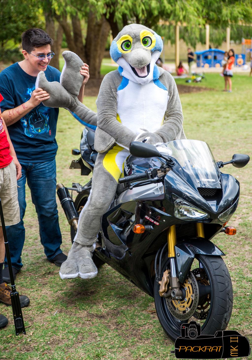 Squeak-rider