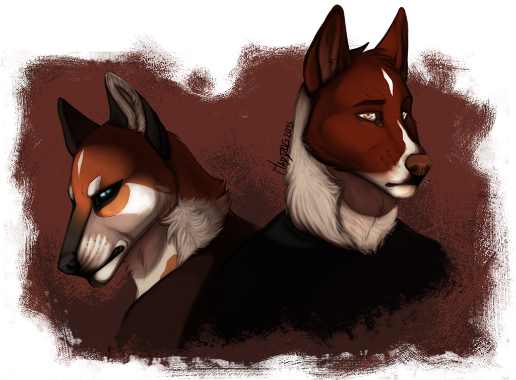Most recent image: Dogs