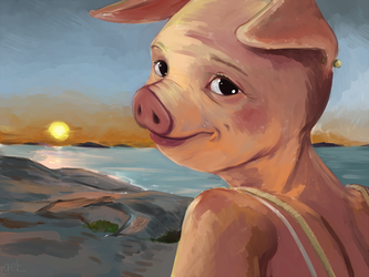 Pig in sunset