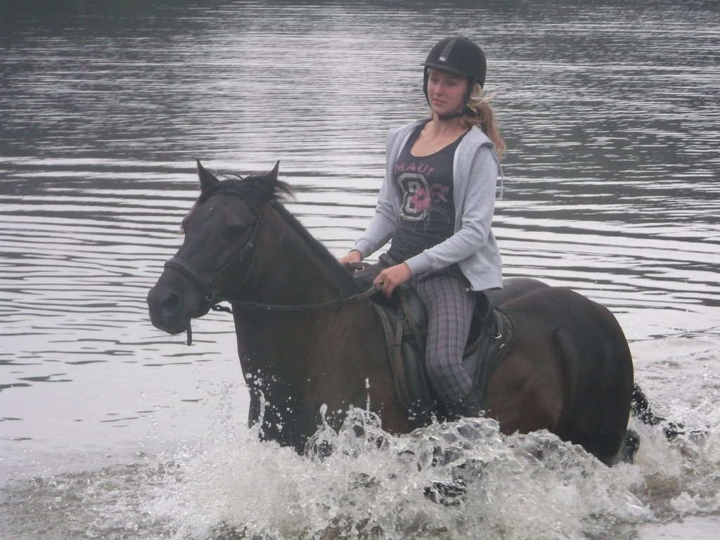 Horsey bathtime! - II