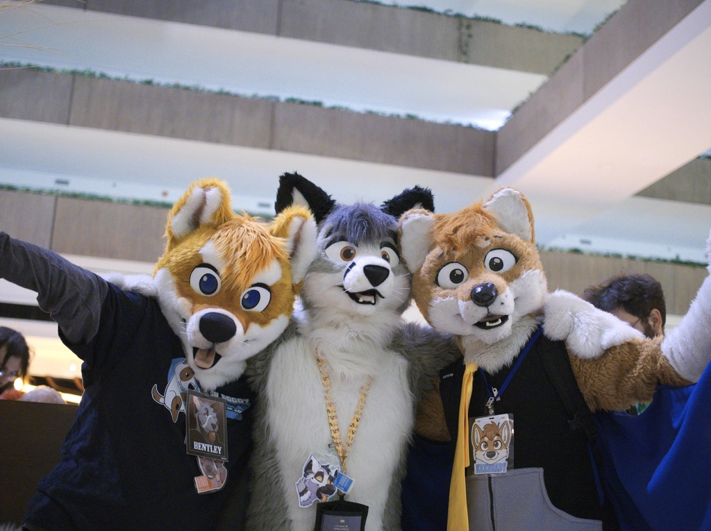 Most recent image: Furfest 2015 - Foxdog, Fox, and Foxdog