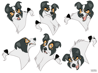 Duncan Expressions Sheet