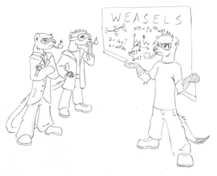 Weasels: how do they work?