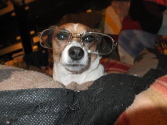 Lumen looking a lot like Mr Peabody