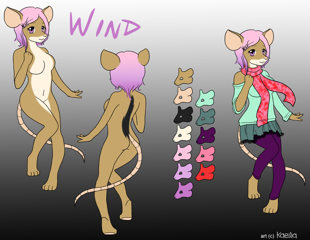 Wind Reference Sheet