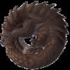Avatar for itszutak