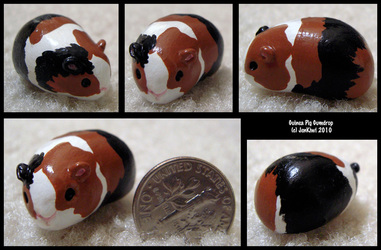 Gumdrop Guinea Pig