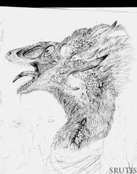 Paid sketch (WIP)