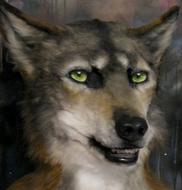 wolfcoyote mask