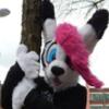 avatar of KibaWolf16