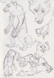 Werewolf sketches
