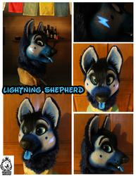 Lightning Shepherd