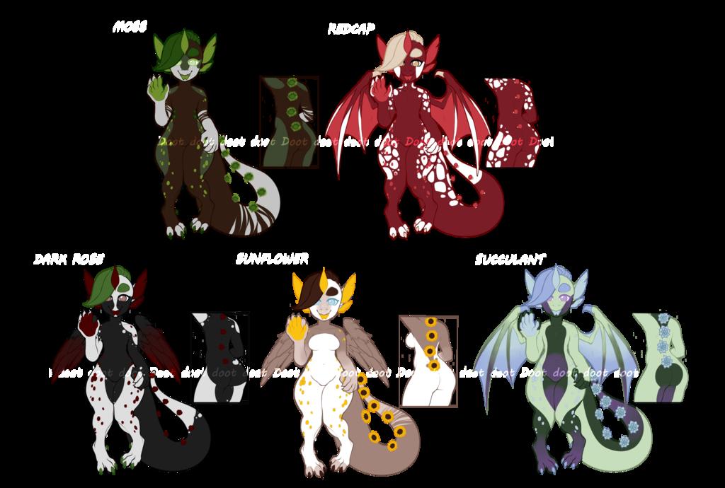 Most recent image: Botanic Drakes ~ Adopts!