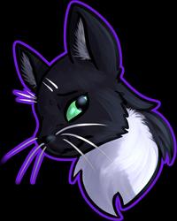 (Gift) Cat Headshot