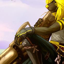 Commission: Monster Hunter Swift