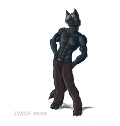 Other work / Vercion color (c) character Zwolf