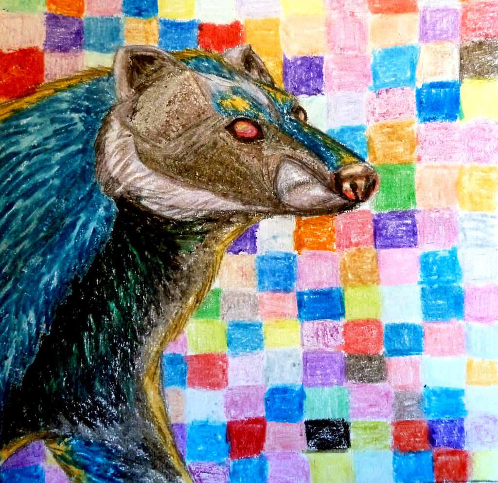 Amur Badger