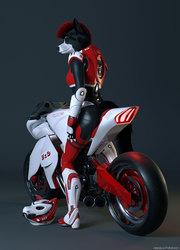 Polestar Rider