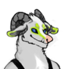 avatar of Shrimp