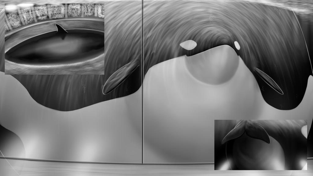 Gahtren Commission - Orca 03