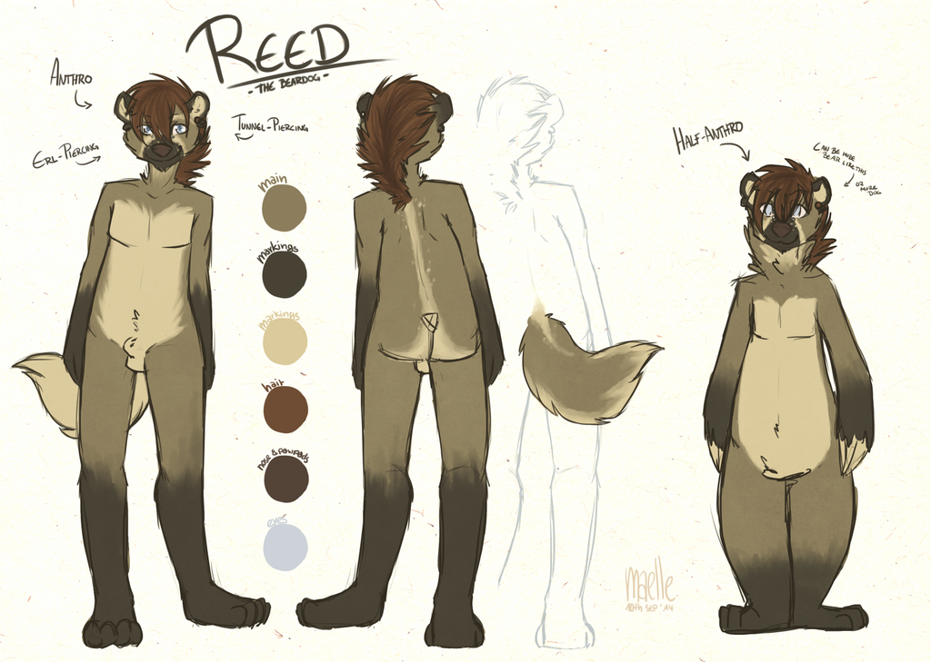 REED - Charsheet